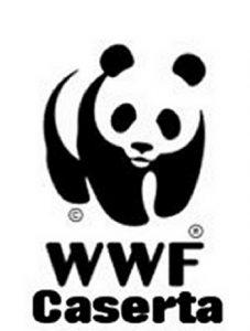 logo_wwf_caserta